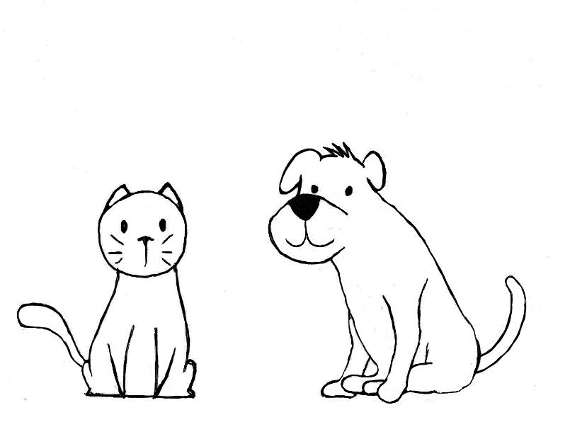 pet portrait content