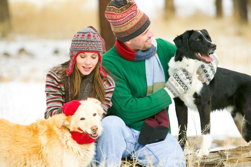 keeping pets warm